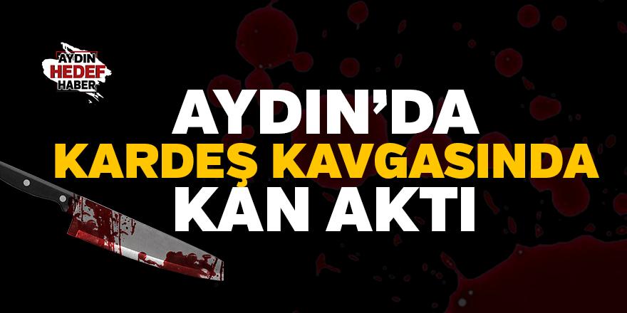 Aydın'da kardeş kavgası kanlı bitti