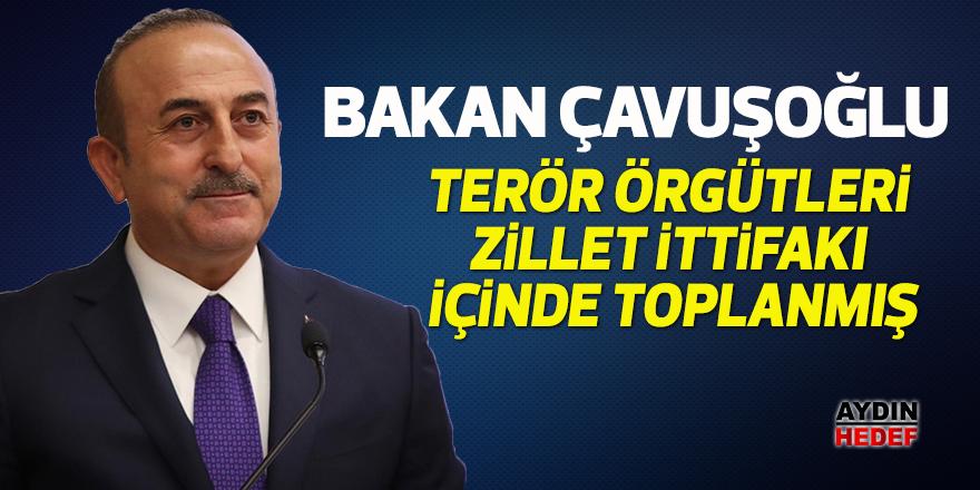 """Bakan Çavuşoğlu; """"Terör örgütleri zillet ittifakı içinde toplanmış"""""""