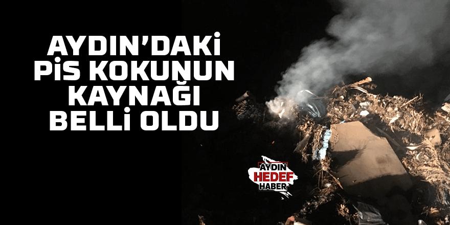 Aydın'daki kötü kokunun kaynağı belli oldu