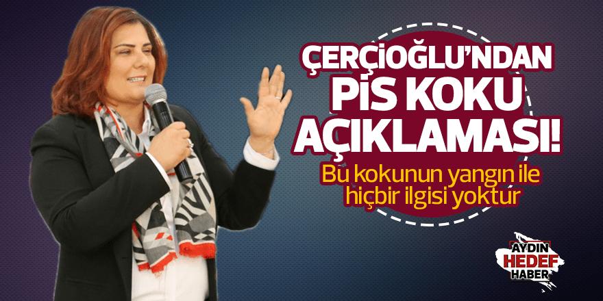 """Çerçioğlu, """"Jeotermalden kaynaklanan bir kokudur"""""""