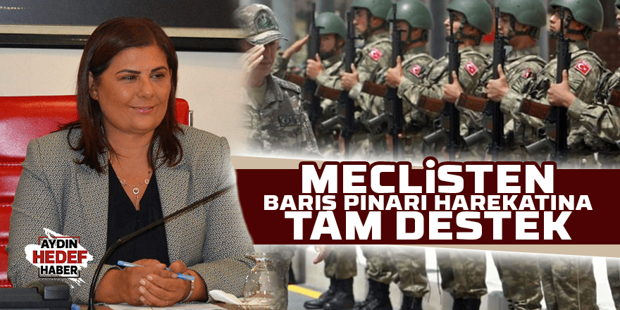 Meclisten 'Barış Pınarı Harekatı'na tam destek
