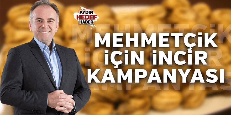 Mehmetçik için incir kampanyası