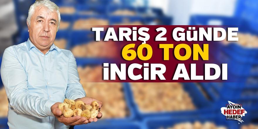Tariş 2 günde 60 ton incir aldı