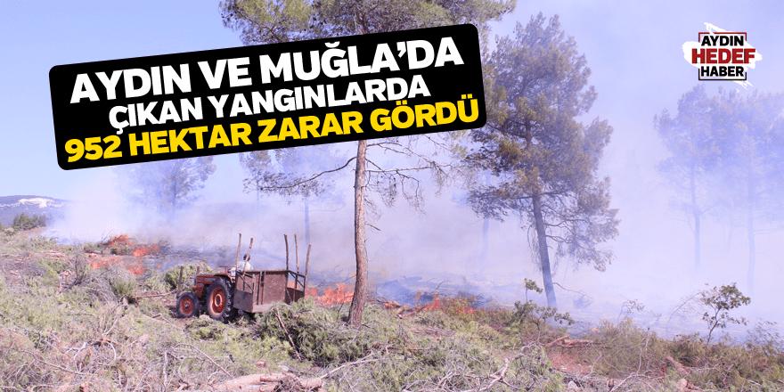 Aydın ve Muğla'da çıkan 282 yangında 952 hektar zarar gördü