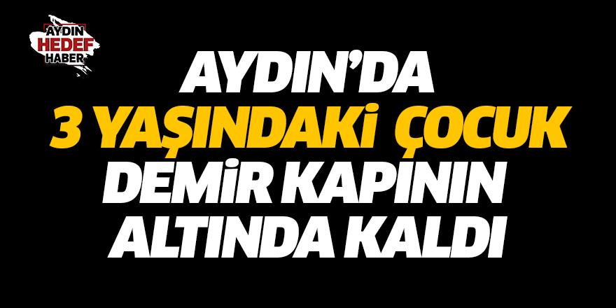 Aydın'da 3 yaşındaki çocuktan acı haber