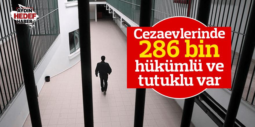 Cezaevlerinde 286 bin hükümlü ve tutuklu var