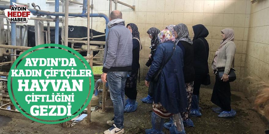 Aydın'da kadın çiftçiler hayvan çiftliğini gezdi