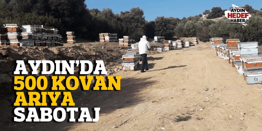 Aydın'da arılar telef oldu