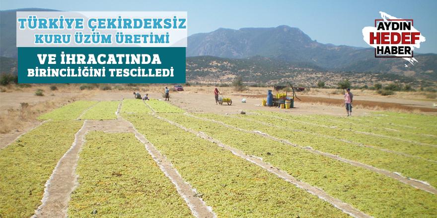 Türkiye çekirdeksiz kuru üzüm üretimi ve ihracatında birinciliğini tescilledi
