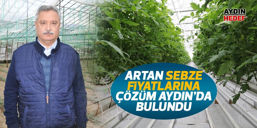 Artan sebze fiyatlarına Aydın'da çözüm bulundu