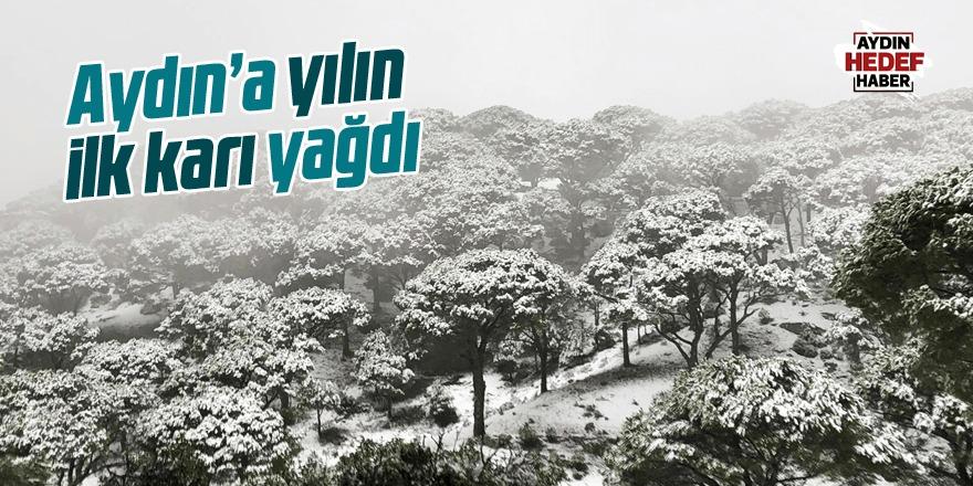 Aydın'da yılın ilk karı Karacasu'ya yağdı
