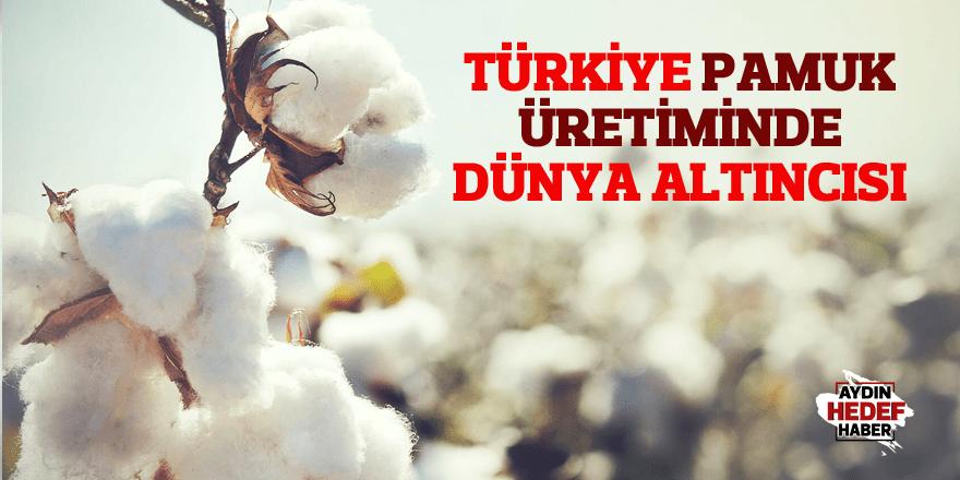 Türkiye pamuk üretiminde dünya altıncısı