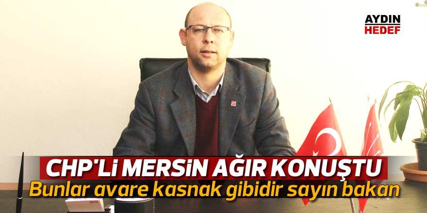 CHP'li Mersin ağır konuştu