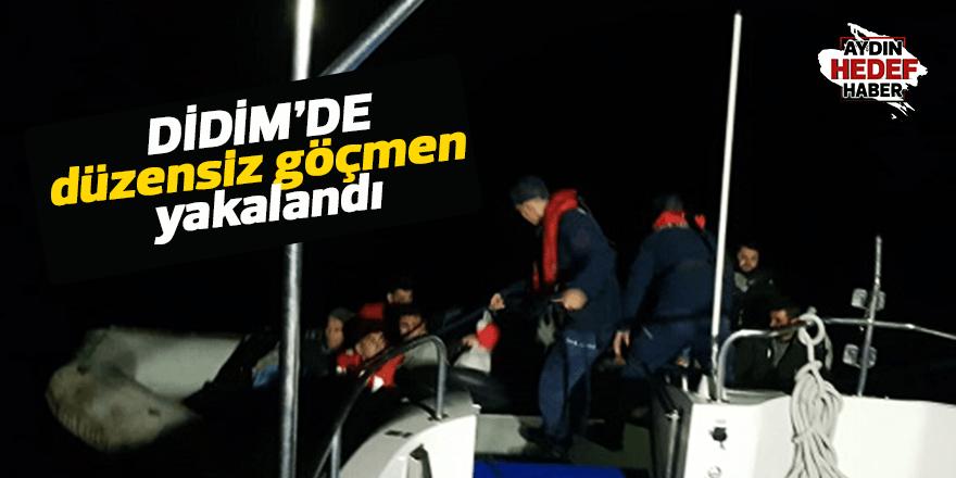 Didim'de düzensiz göçmen yakalandı