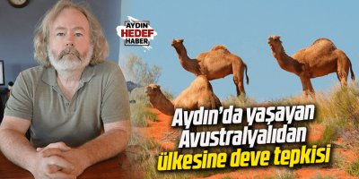 Aydın'da yaşayan Avustralyalıdan ülkesine deve tepkisi