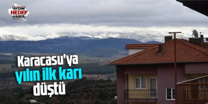 Karacasu'ya yılın ilk karı düştü
