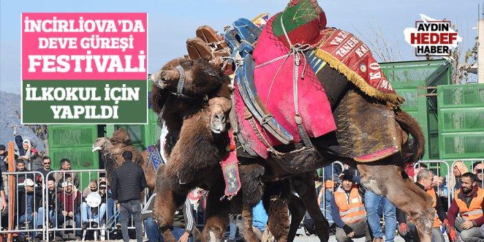 İncirliova'da deve güreşi festivali, ilkokul için yapıldı