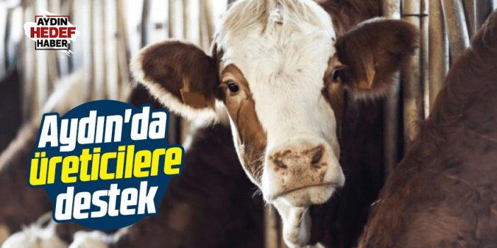 Aydın Süt Üreticileri Birliği'nden üreticilere destek