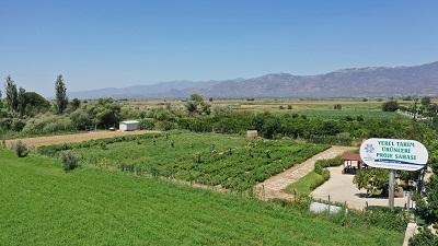 aydin-buyuksehir-belediyesi-yerel-tohumlara-sahip-cikiyor-122050-d5ca9303ff53797b5679d58a4b03c103.jpeg