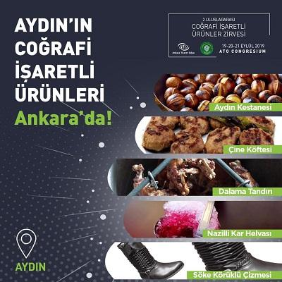 aydin-kestanesi-ab-tesciline-yakin-127650-3fe691dc315e658c6473dd820cf413f5.jpg
