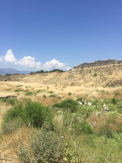 dunya-mirasi-afrodisiasta-turistleri-yabani-otlar-karsiliyor-110812-14c028b501a500c5f84ffd4c3263d6e7.jpg