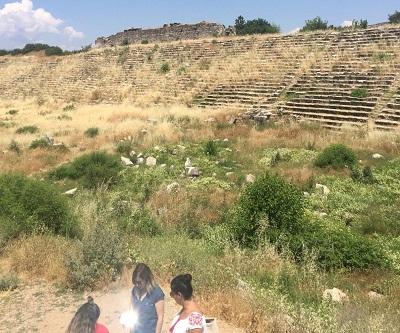 dunya-mirasi-afrodisiasta-turistleri-yabani-otlar-karsiliyor-110812-ec6ae37e0caff25eeb729ff92edddcc2.jpg
