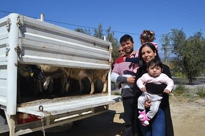 koyunlar-sahiplerini-buldu-98144-dcc4a34a8c9e42814626221bf07d41dc.jpg