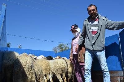 koyunlar-sahiplerini-buldu-98144-ebe2d83446840ac76b19617dda4cdafe.jpg