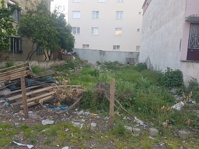 metruk-ev-ve-horoz-cilesi-109187-992b774a9c06f016ec043f08608b863b.jpg