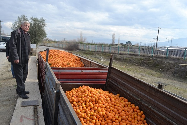para-etmeyen-portakal-meyve-suyu-olarak-degerleniyor-89191-2ce0a609d9284fa22490540169f06463.jpg