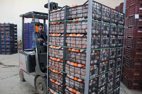 son-narenciyeler-kuzey-iraka-ihrac-edildi-97849-5acb855fe4953fdab8aa1292e4c328cb.jpg